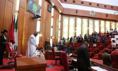 Nigeria Senate President bukola saraki on minimum wages parliament